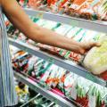 Placas de isopor para refrigeração